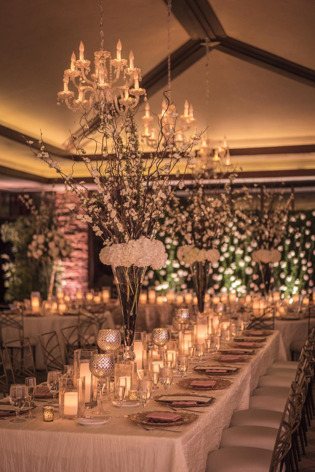Wedding planning planners in las vegas chelsie alexbrella gagiano photographybrandrea eppolito weddings junglespirit Image collections