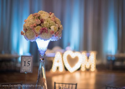 Aimee & Mike<br>Exceed Photography<br>Tory L. Cooper Wedding & Event Planner