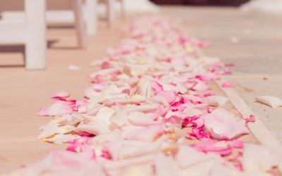 Romantic Springtime Westin Las Vegas Wedding